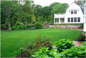 Top 10 Amazing Facts OF Landscaping and Lawn Care Industry